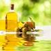 aceitunas y botella de aceite, fondos de alimentos